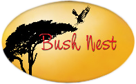 Bush Nest 4x4 Trailers
